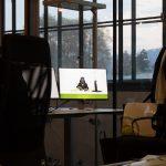 LimeVader schneidet Limetten in Linz