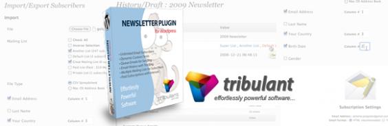 Newsletter lassen sich in WordPress mit dem Plugin von Tribulant komfortabel verschicken.